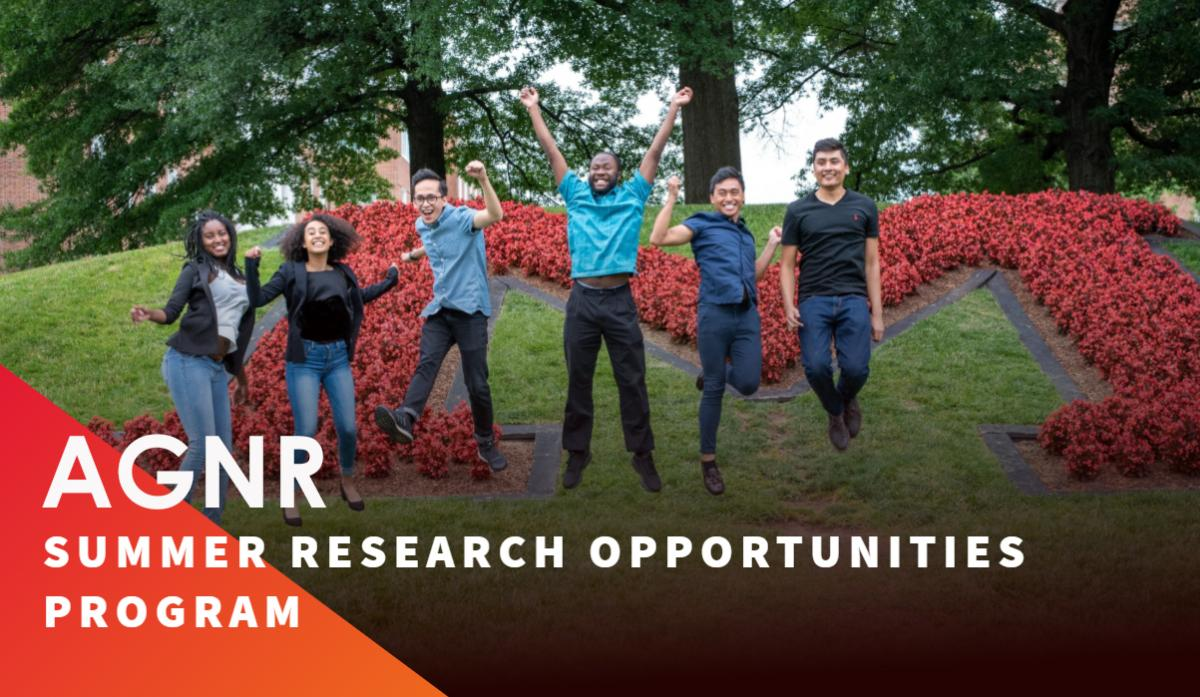 Summer Research Opportunities Programs The University Of